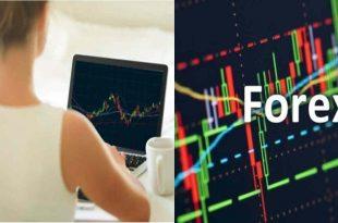 Bermain Forex Web Yang Aman